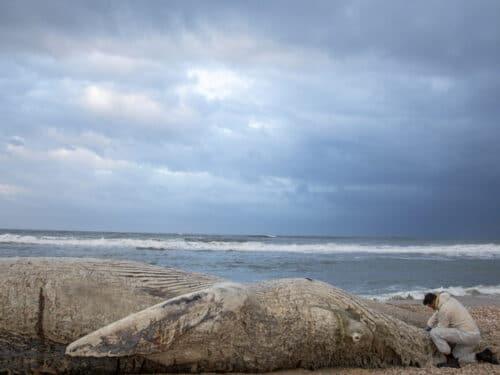Израильские пляжи загажены гудроном надолго — министр экологии