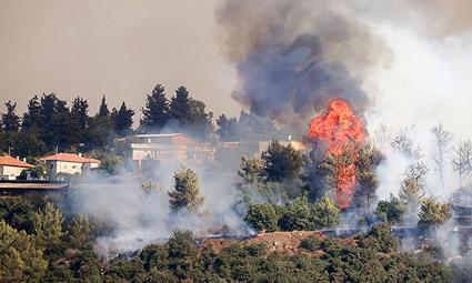 Пожар возле Иерусалима:  глава правительства Нафтали Беннет отдал распоряжение начать переговоры о международной помощи