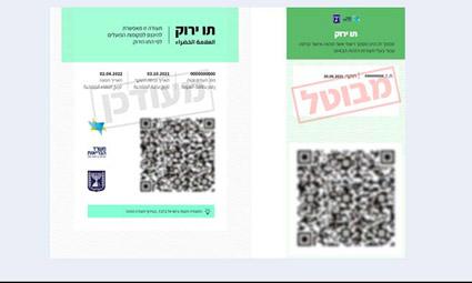 С 17.10 в Израиле действительны только новые «зеленые» паспорта с QR-кодом